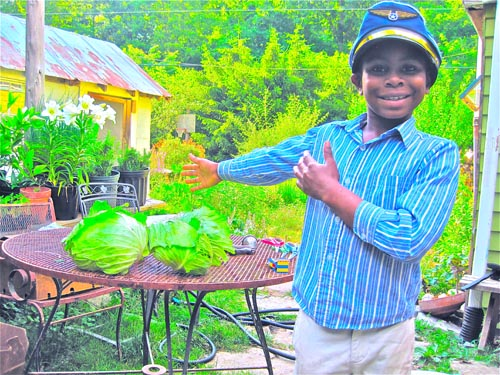 Julian shining bright with the garden's cabbages